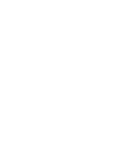 Music Never Stops Foundation